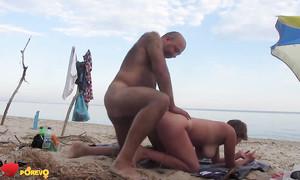 Les Robinsons russes matures font l'amour sur la plage